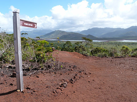 Blue River national park New Caledonia