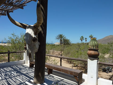 A touch of the wild west on a horse ranch where you can also drive ATVs around the sand dunes