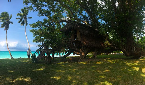 Treehouse at Port Olry Santo
