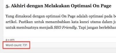 Tampilan Penghitung Kata pada Dashboard WordPress