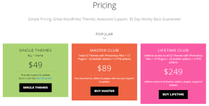 Pricing of Themify Themes