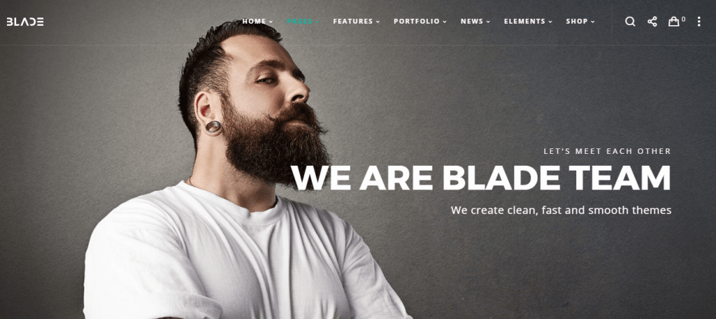 MultiFunctional & Responsive WordPress Theme