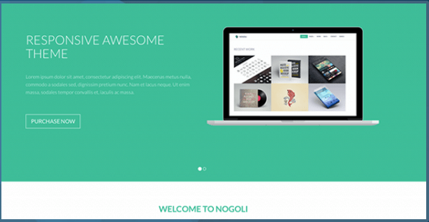 Nogoli Awesome Responsive Theme HTML Bootstrap Template BootstrapBay