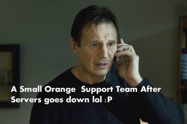 a small orange memes