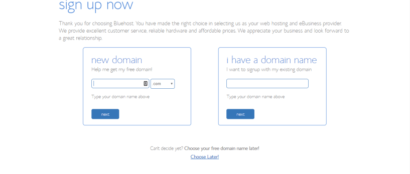 bluehost promo codes- chhose domain n
