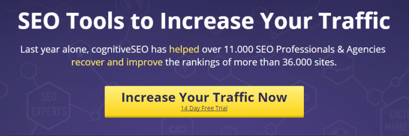 SEO Tools to Increase Your Traffic cognitiveSEO