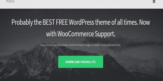 Pixova Lite review homepage