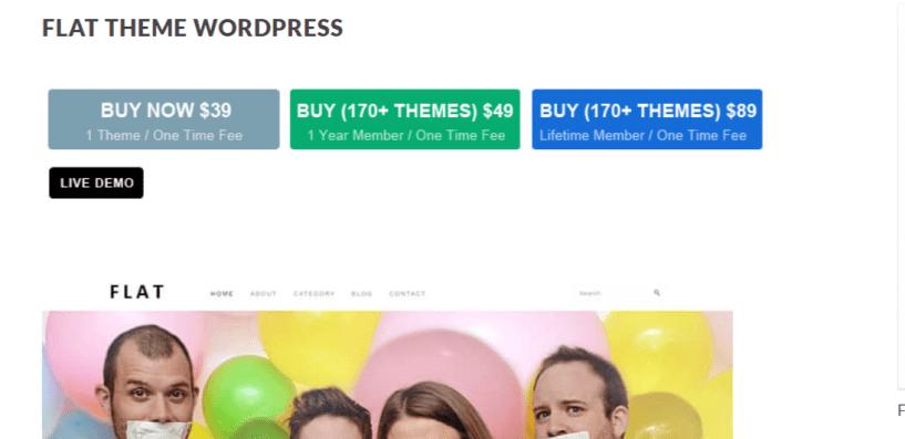 Flat - Photography WordPress Themes