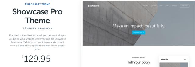 Showcase Pro- WordPress Blog Themes