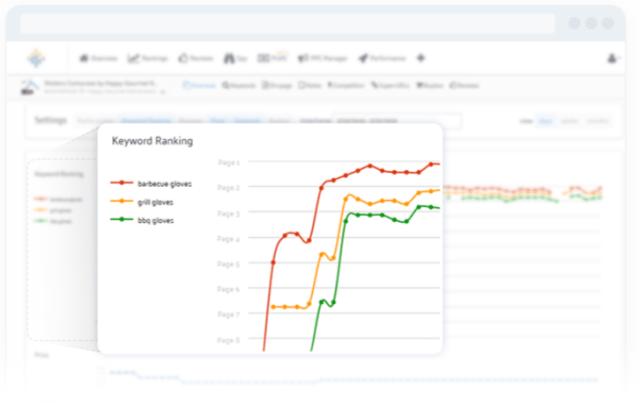 SellerSpirit Review- Keywords Rank Tracker