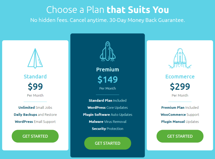 AccesWP Review- Pricing Plans