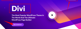 Divi — The Ultimate WordPress Theme Visual Page Builder