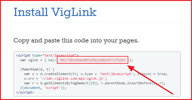 add viglink on wordpress - install viglink