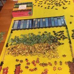 Book Shelf Puzzle