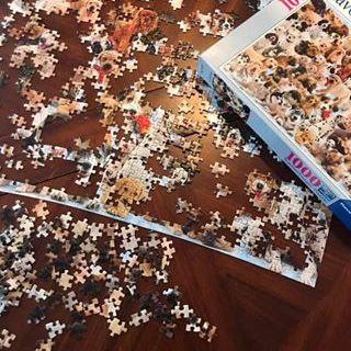 Lori's dog puzzle