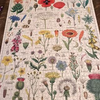 Mary's Flower Puzzle