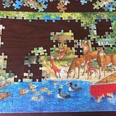 Michelle's Puzzle