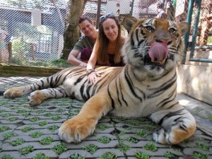 Ryan Biddulph And Kelli With Tigers