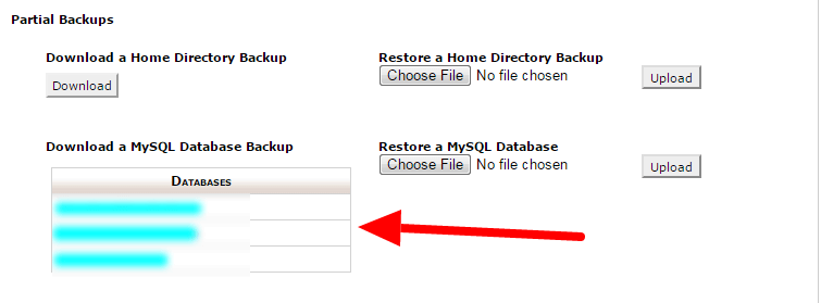 backup your database manually
