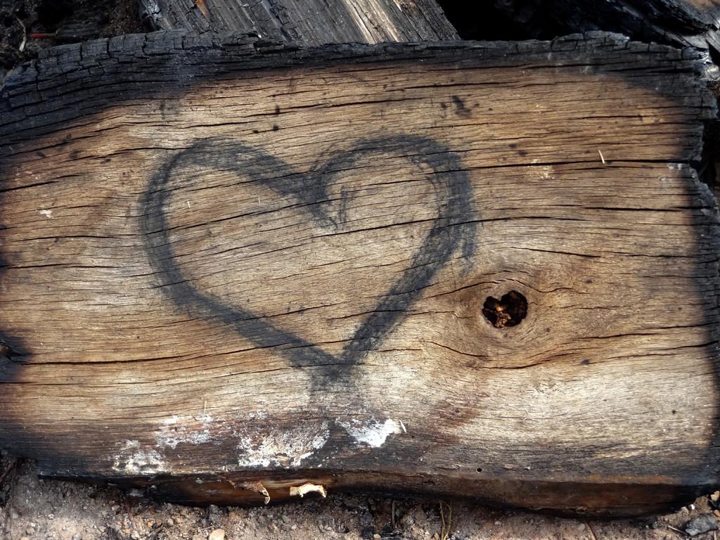 Heart on a log