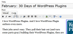 WordPress Rich Text Editor features tabbed controls