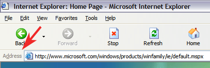 Microsoft Internet Explorer Address Bar
