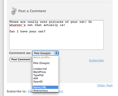 Blogger.com Releases Embeded Comments To Public, Flirts With iGoogle