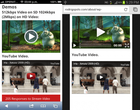 free wordpress video plugin