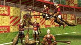 Quidditch: Copa del Mundo. ¿Alguién lo ha jugado?