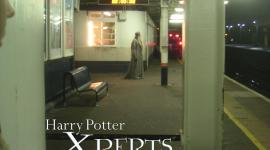 Dumbledore… ¿esperando el tren?