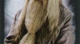 Nuevas Imágenes Promocionales de Dumbledore, Ron y Hermione