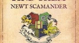 Nuevas Portadas para 'Quidditch a Través de los Tiempos' y 'Animales Fantásticos y Dónde Encontrarlos'
