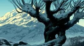 Top 10: Plantas Mágicas del Mundo de 'Harry Potter'