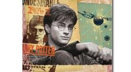 Reveladas Portadas de 2 Nuevos Diarios de 'Harry Potter y las Reliquias de la Muerte'