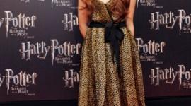 Imágenes de la Premier Francesa de 'Harry Potter y las Reliquias de la Muerte, Parte I'
