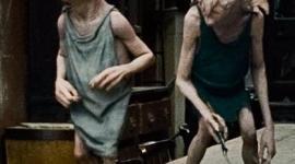 Anunciadas Nominaciones para 'Harry Potter' en los 'Visual Effects Society Awards'