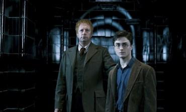 Top 10: Padres en la Saga de Harry Potter
