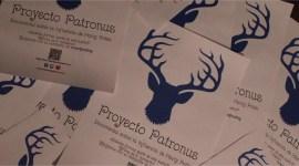 Proyecto Patronus: También Podrán Participar Fanáticos de Harry Potter en Latinoamérica!