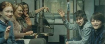 JKR revela cuál es la Casa de Hogwarts de James Sirius y Teddy Lupin, y más datos!
