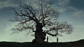 100 momentos en los que las películas de Harry Potter son visualmente perfectas