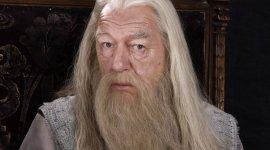 JKR habla de Albus Dumbledore y su nexo con Newt Scamander
