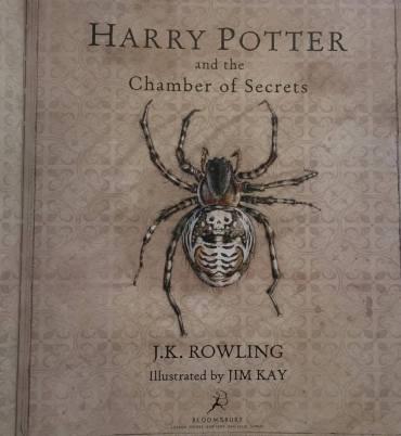 'Harry Potter y la Cámara Secreta' Ilustrado: Capítulo 1