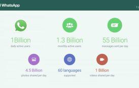 Record Whatsapp: gli iscritti sono tantissimi! Numeri da far venire i brividi