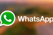 Come risparmiare dati durante le chiamate di Whatsapp