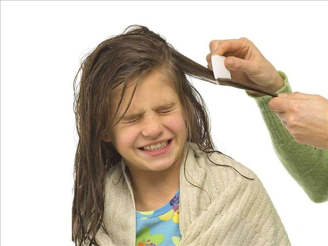 Lice Removal