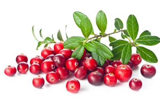 Cranberry for Vaginal Discharge