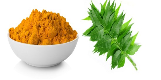 Neem And Turmeric For Reduce Breast Size
