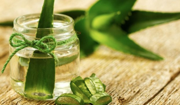 Aloe Vera For Delayed Periods