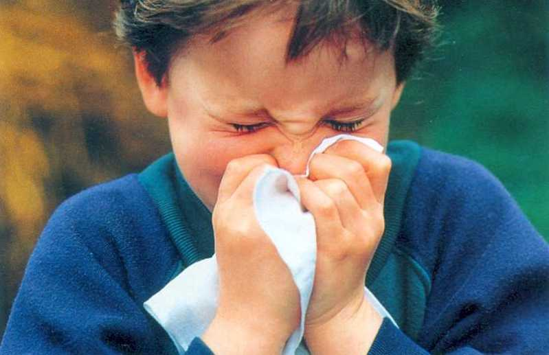 9 Best Home Remedies for Common Cold and Cough