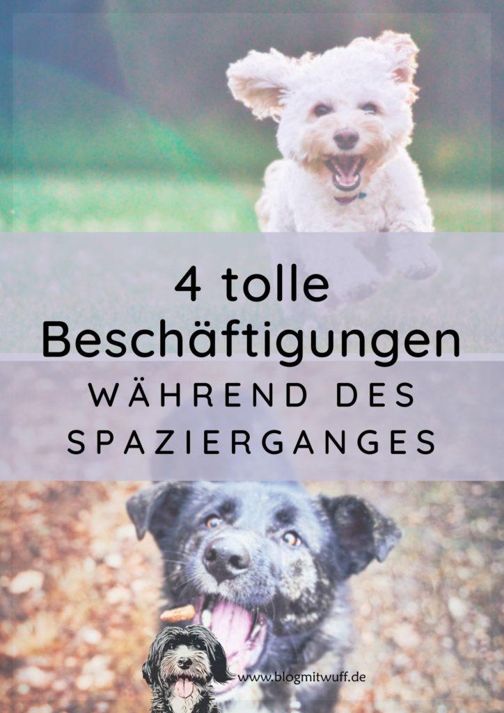 Titelbild zu 4 tolle Beschäftigungen während des Spazierganges